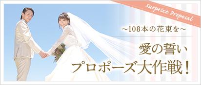 愛の誓い プロポーズ大作戦!